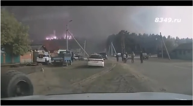Вы в курсе почему у нас горят леса? Их поджигают... целенаправленно!