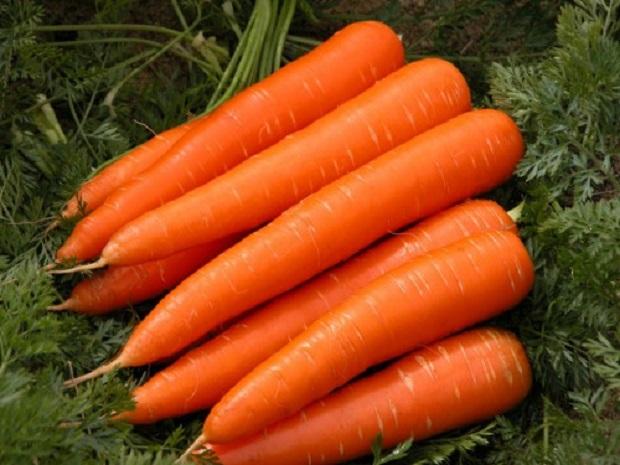 Полезная морковка