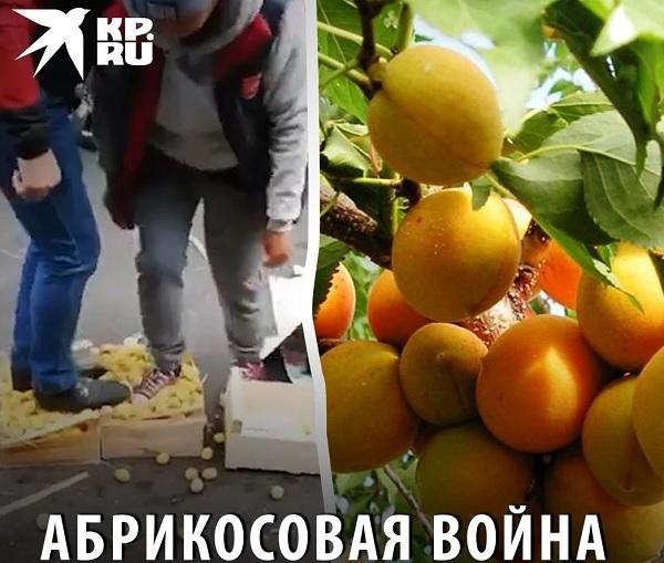 «Абрикосовая война» меж армянами и азербайджанцами в РФ – зачем нам она?
