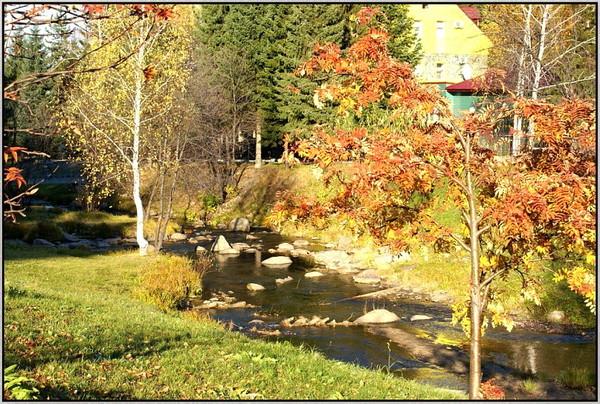 Осень-прикольные и смешные цитаты