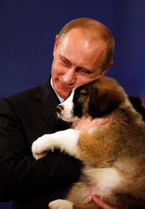 Как путин подарил щенка 199