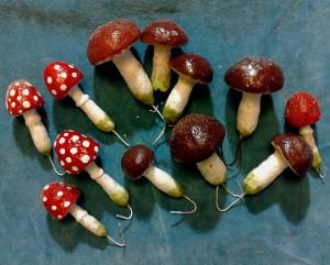 грибыыы