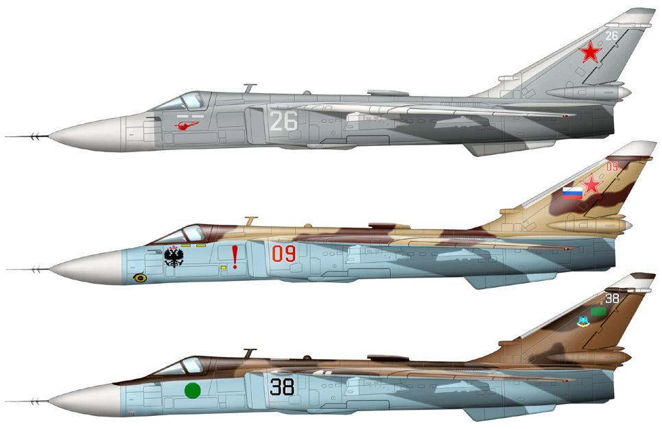 su-24-color