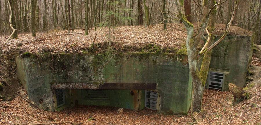 Westwall-Bunker-mit-Gasschleusen-und-MG-Scharte-Eifel-Huertgenwald