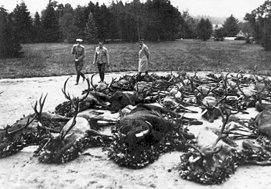 Кому охота убивать?