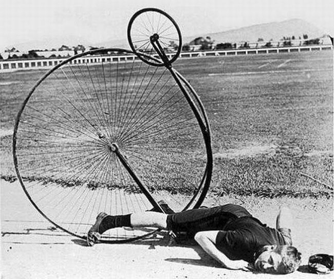 velosiped-pauk