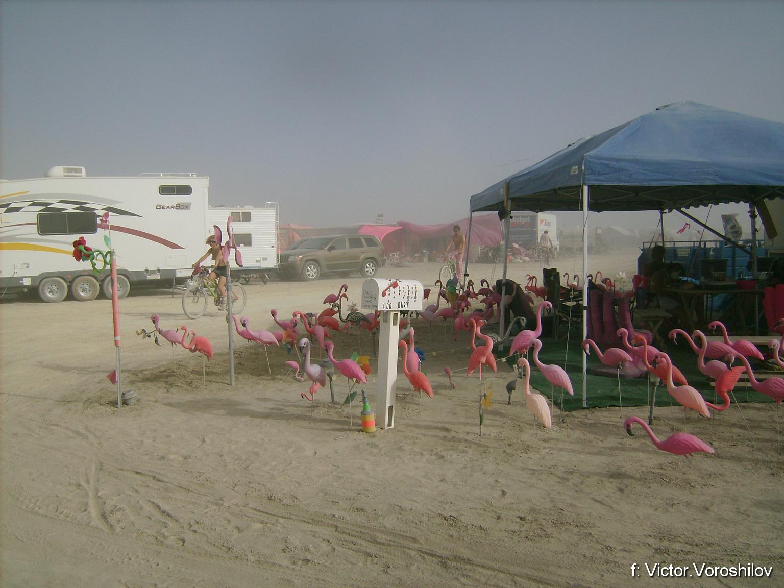 Burning Man - 2008 (Бернинг Мен - 2008)