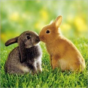 поцелуй2