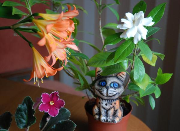 Васька в цветочном саду