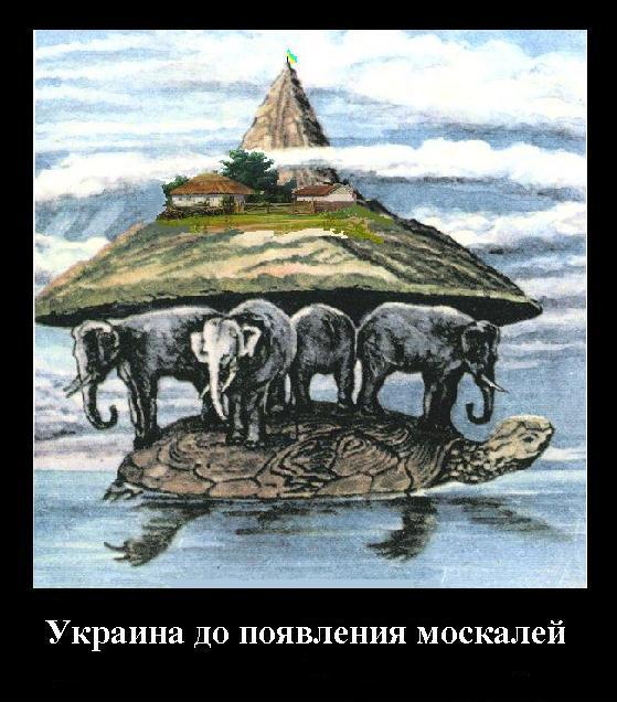 shestakov009
