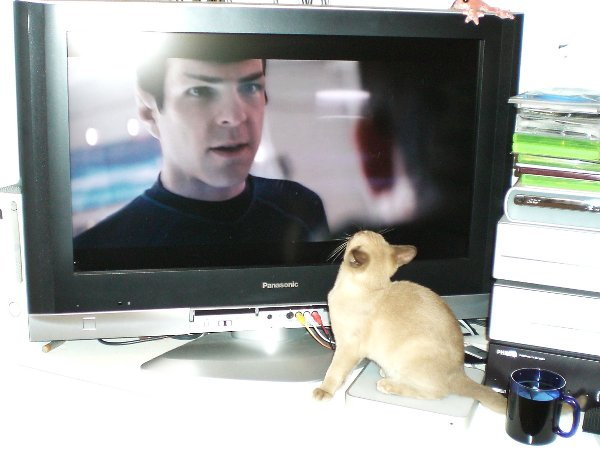 Jasmin and Spock