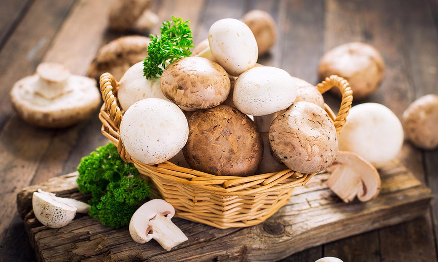 салат с грибами рецепт
