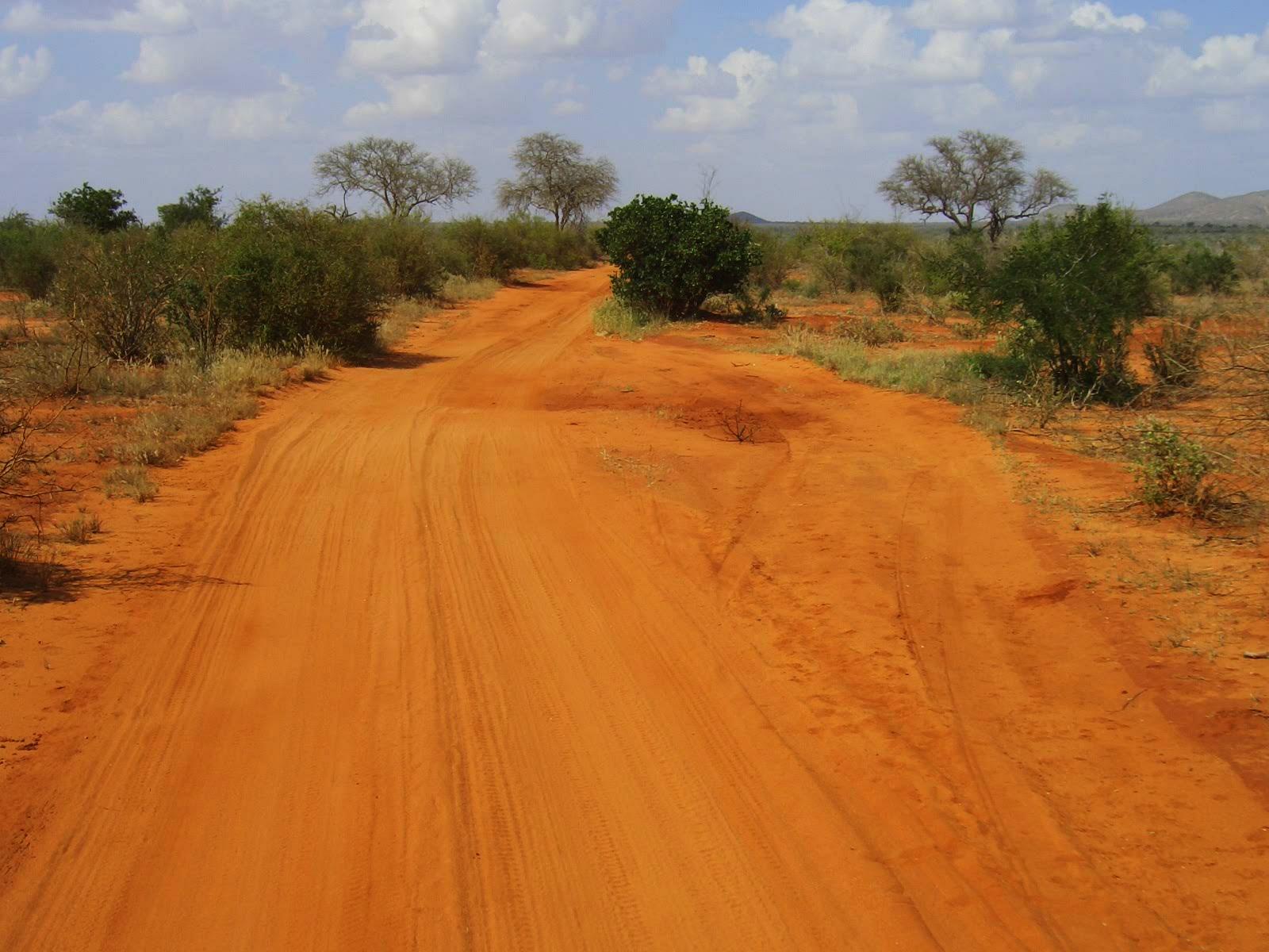 Красная земля саваны
