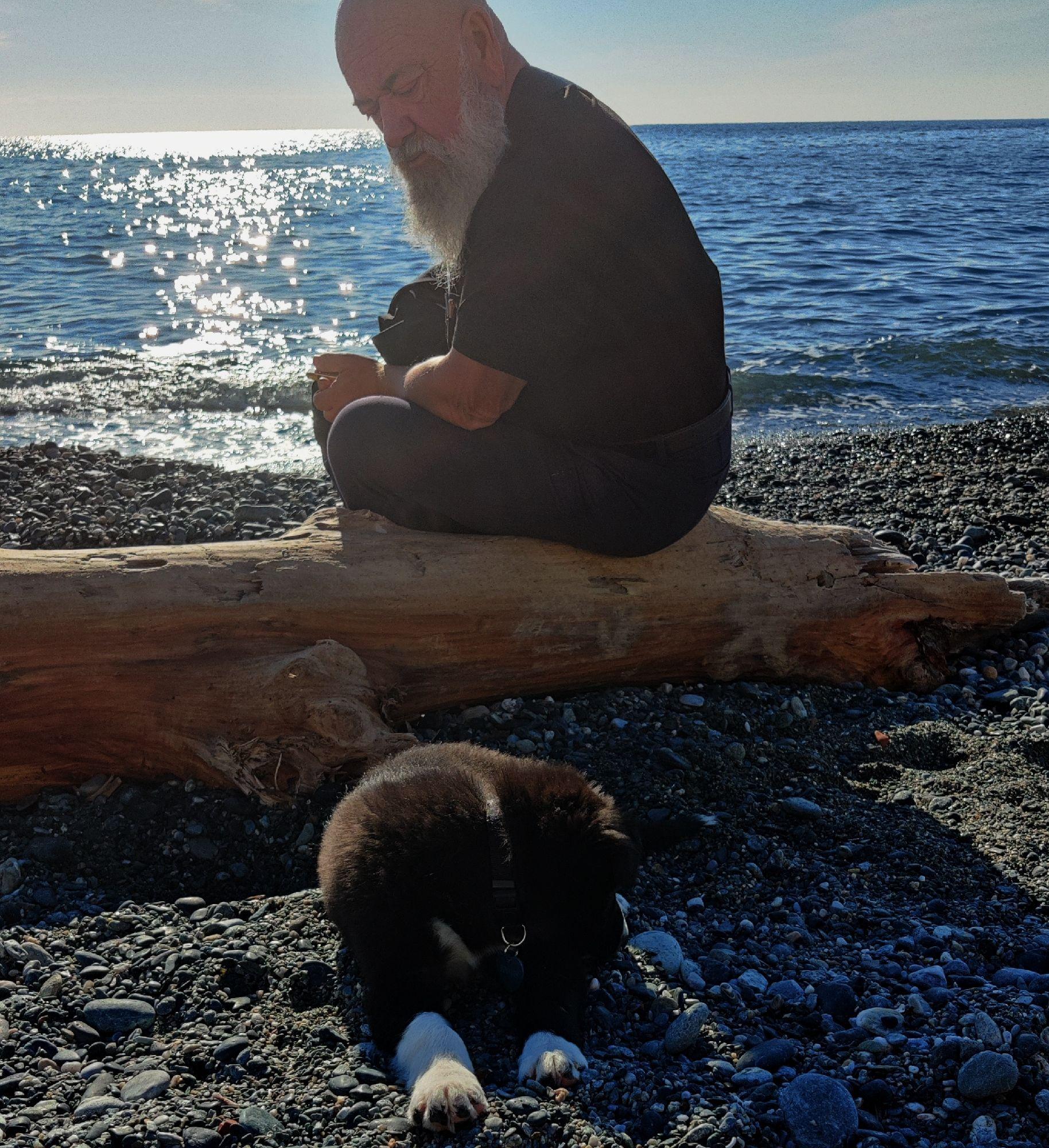 Этого щенка зовут Ирозо. Я так удивилась странному имени, что мне тут же рассказали,  про последнего мула альпийских стрелков, умершего в прошлом году в возрасте 40 лет ( это человеческие - 120)