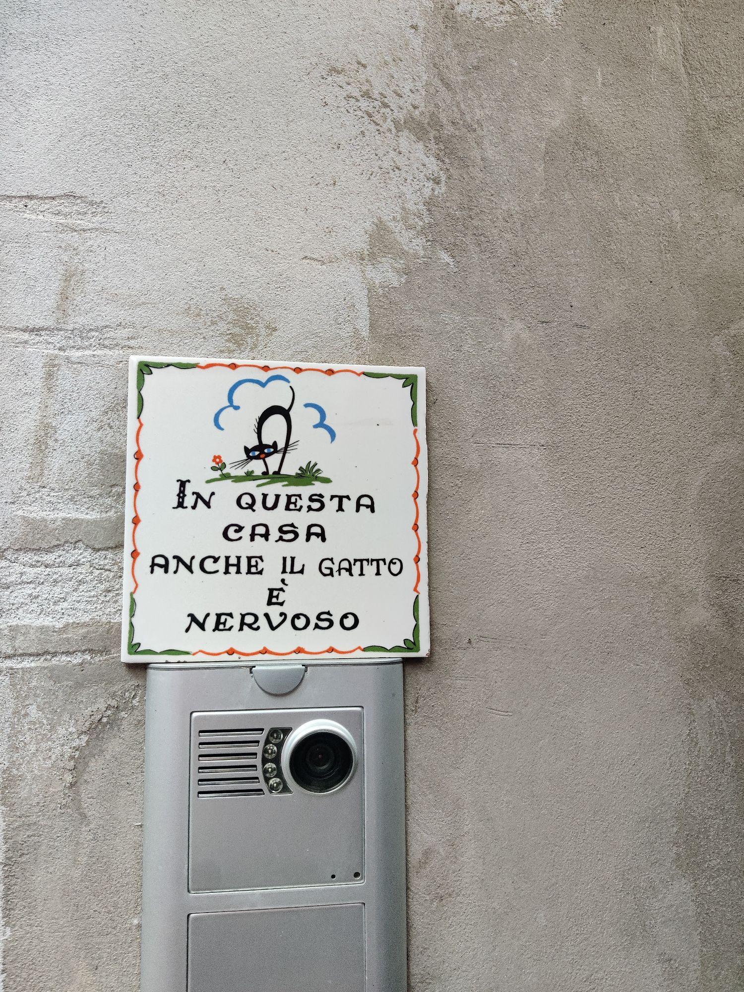 Мне очень понравилась эта надпись над дверным звонком: В этом доме даже кот нервный.