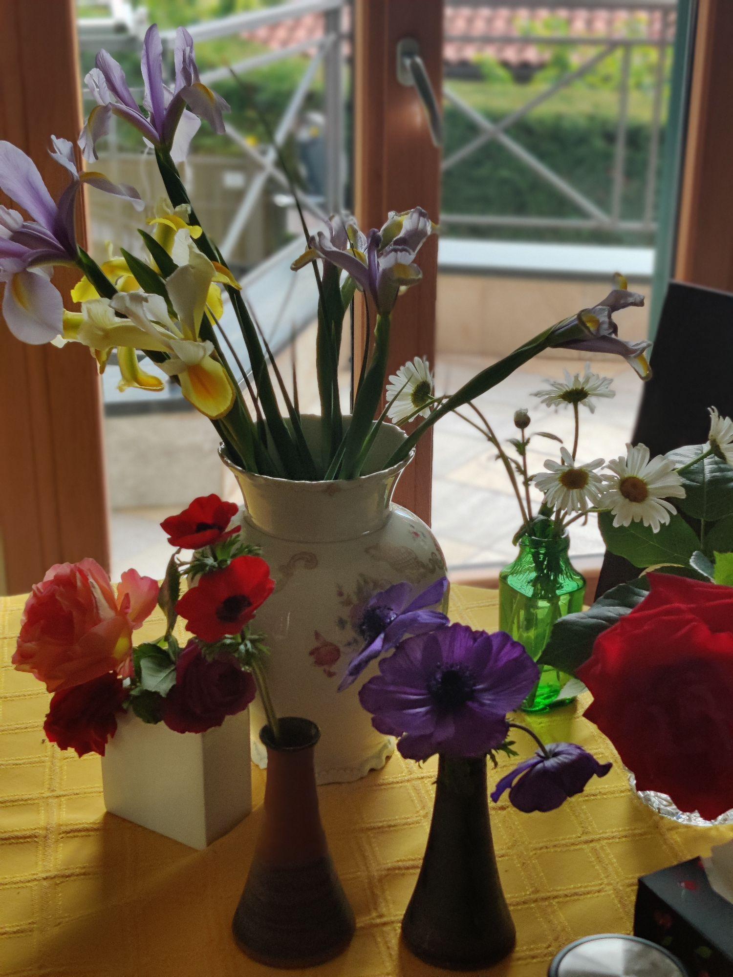Цветы из сада. Я безжалостно срезаю и тащу на стол. Так больше возможности ими восхищаться.