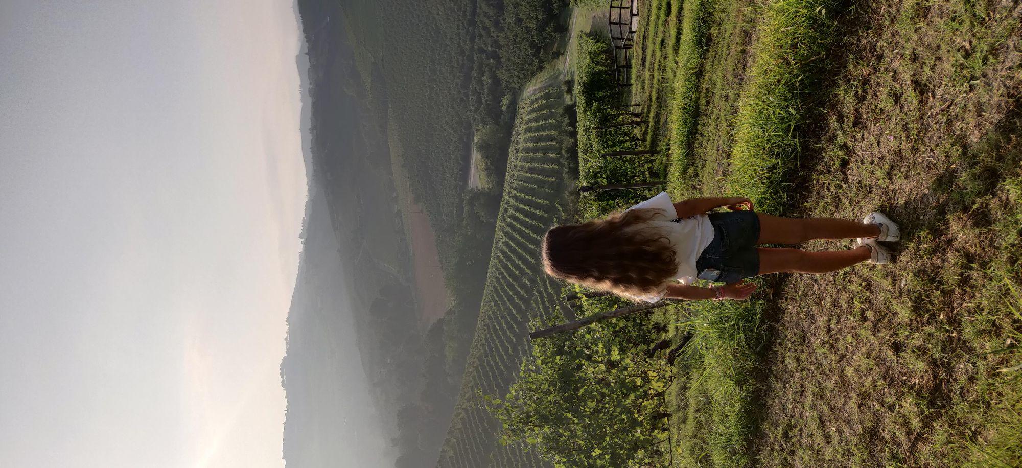 Год назад в Пьемонте мы с рассветом до завтрака вдвоем пошли фотографировать виноградники.