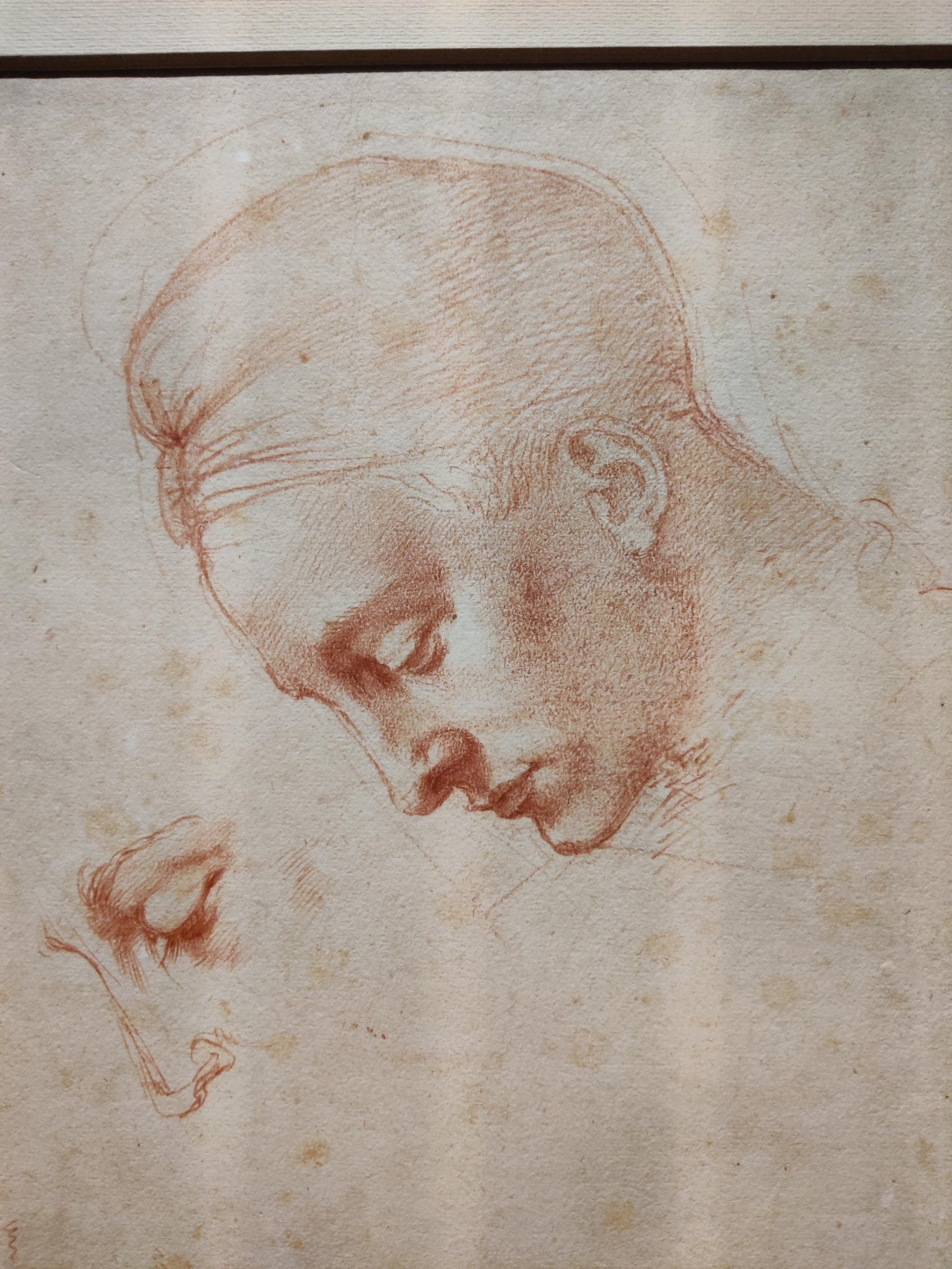 Эскиз к голове Леды, 1530