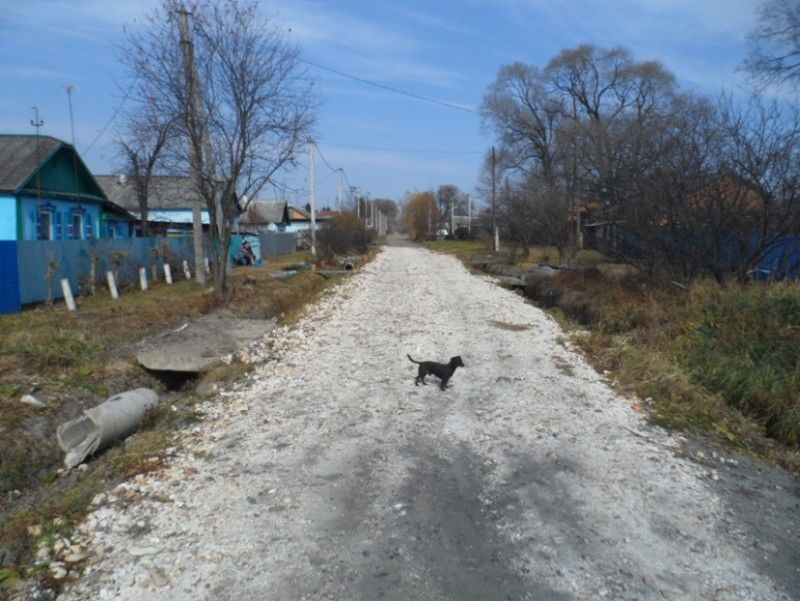 Село Владимировка.