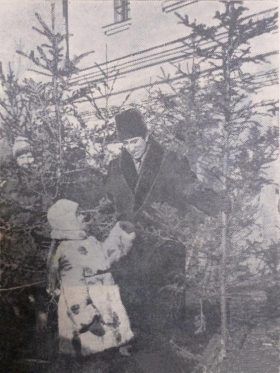 Елочный базар в декабре 1963 года.