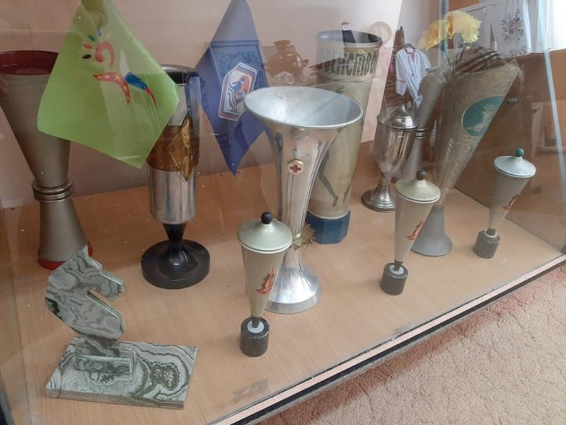 Спортивные награды в музее школы с. Борисовка.