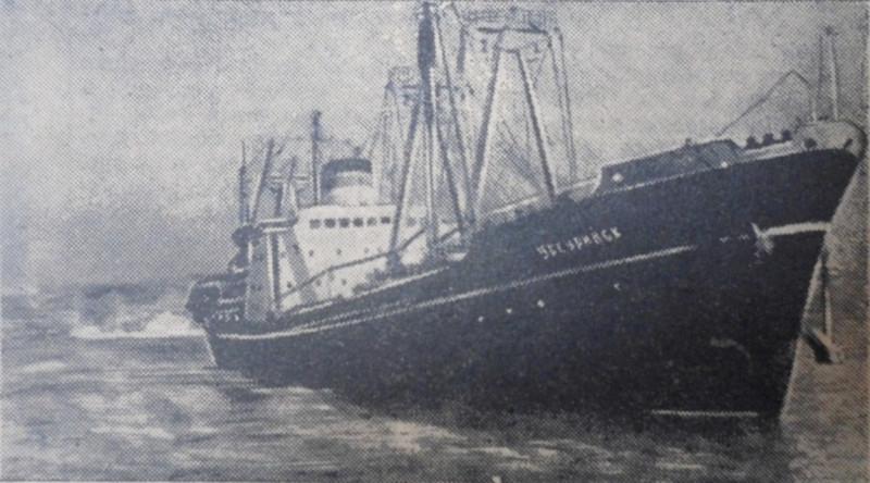 "Фото - Г. Корниенко, газета ""Коммунар"", 1961 год."