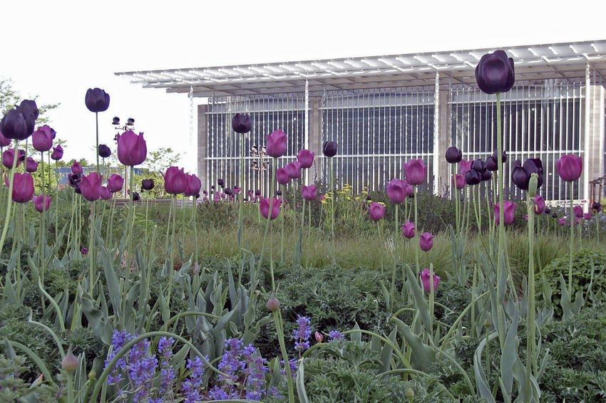 Resize of Lurie_Garden_Facing_the_AIC_Modern_Wing