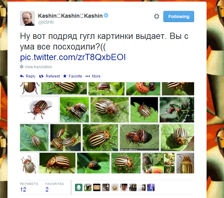 kashin9