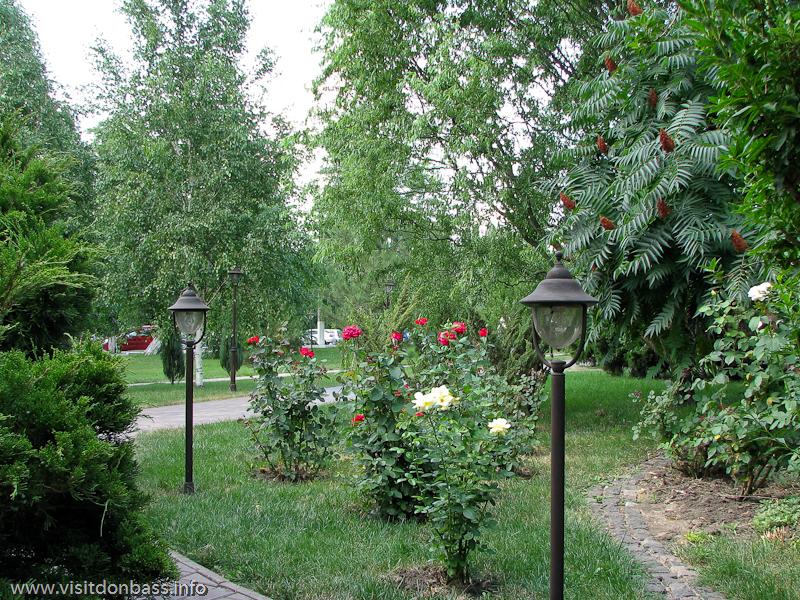 Цветы и кустарник в азовстальском сквере