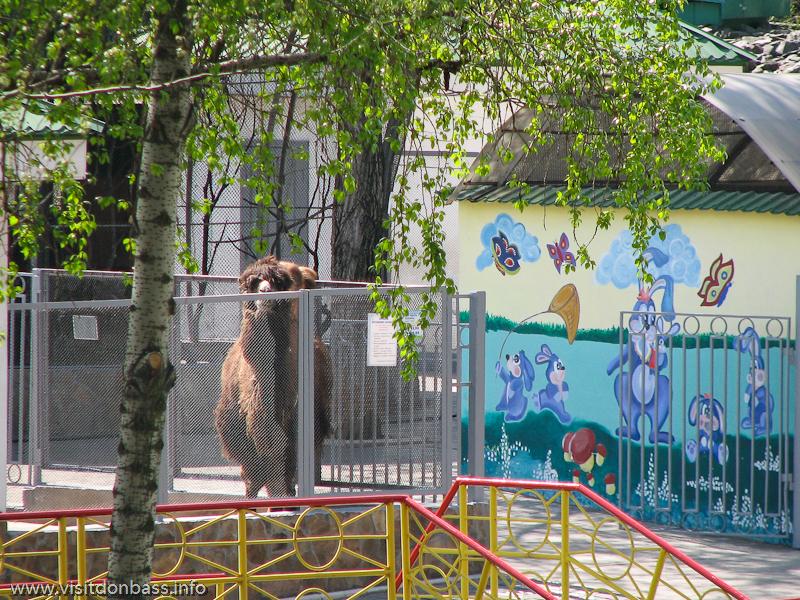 Животные в донецком зоопарке ждут гостей