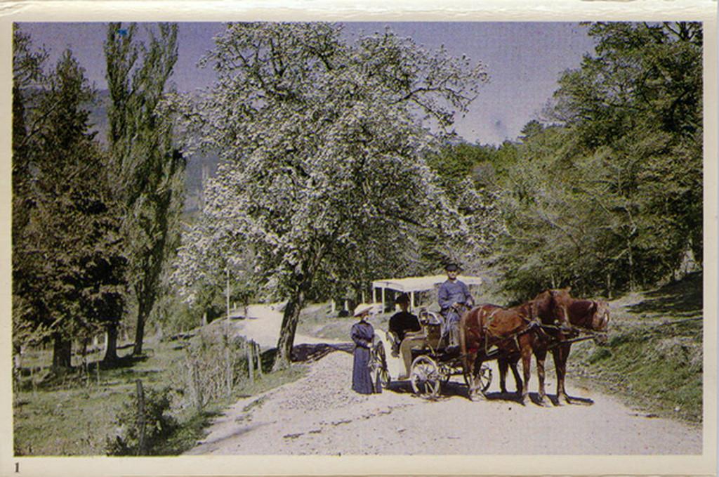 Крымская весна 1910 года Веденисов