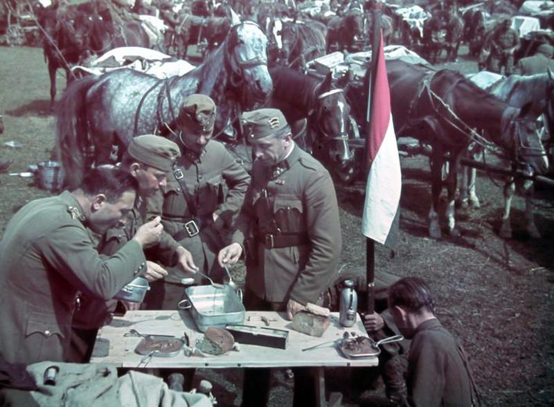 1940 Transylvania2