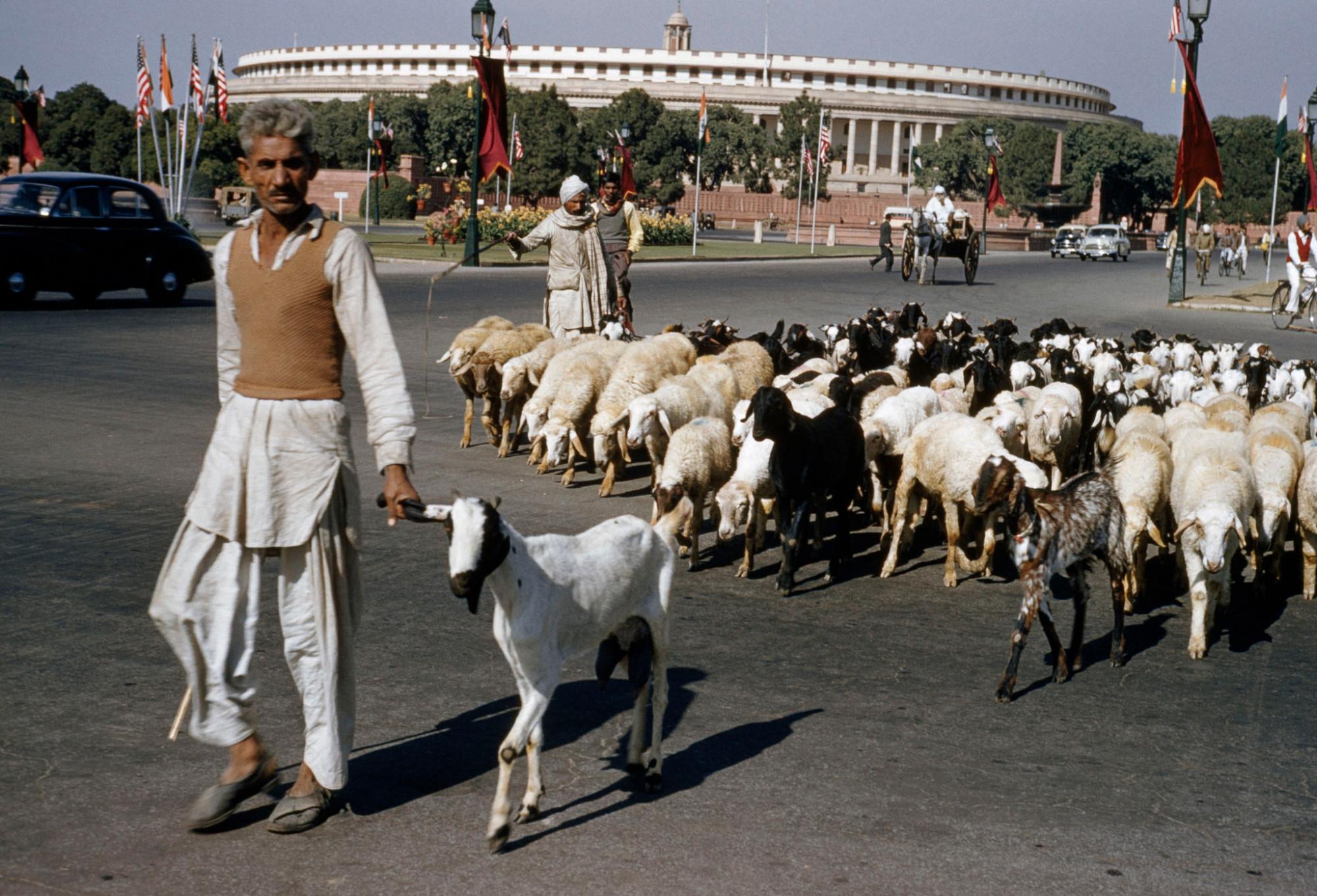 1960 Delhi by Herbert S. Wilburn Jr.