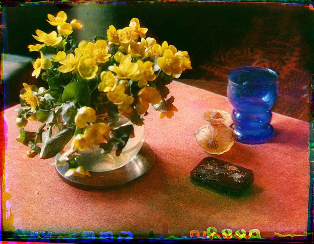 Stilleven met dotterbloemen in een glazen vaas en enkele glazen voorwerpen