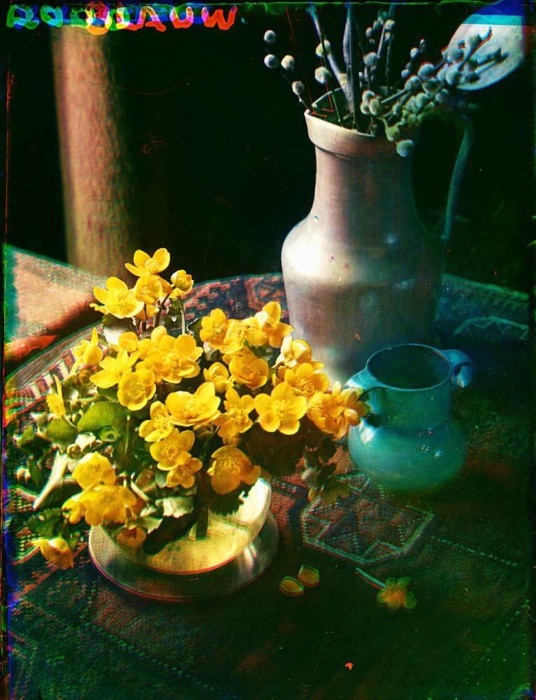 Stilleven met dotterbloemen in een glazen vaas