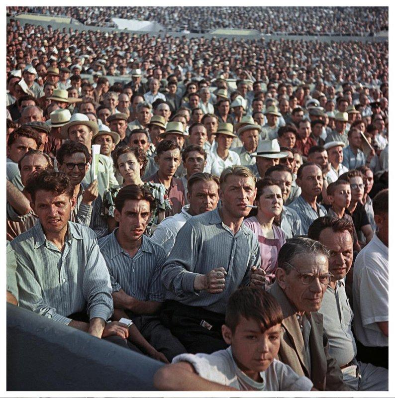 1956 Болельщики на стадионе «Динамо» в Москве. Андрей Новиков