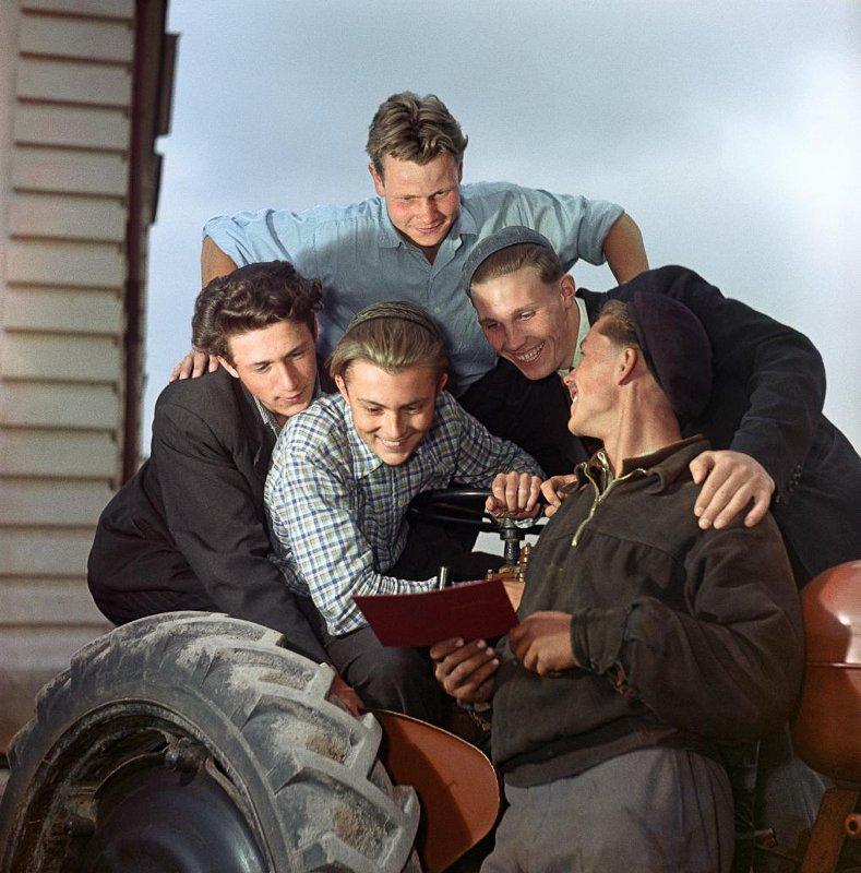 1958 . Первое удостоверение тракториста. Школьный колхоз. Мос. обл. Кнорринг О.Б.