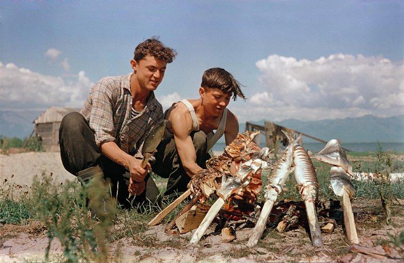 1958 Рыбаки Николай Петров и Леонид Мороков из Нижне-Ангарского рыбокомбината готовят обед «Омуль на рожне». Савин М.