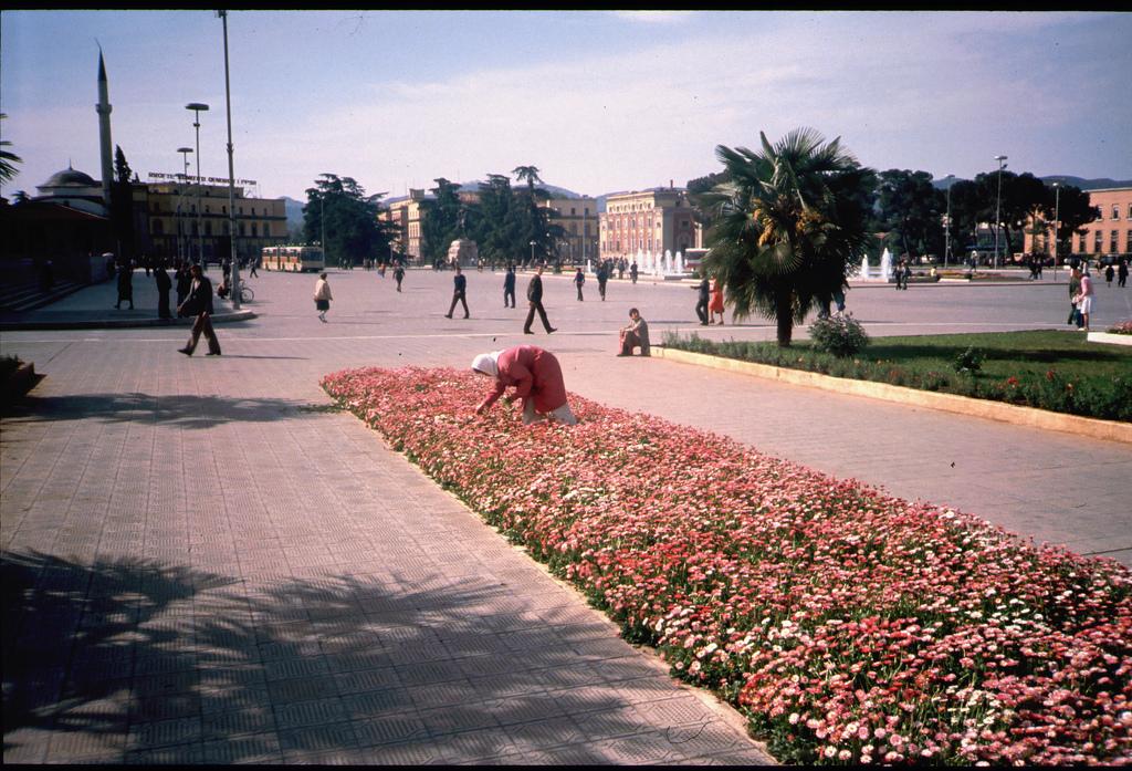 1989 Tirana3