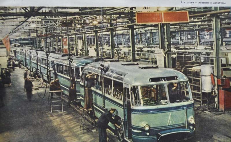 1959 Львовские автобусы