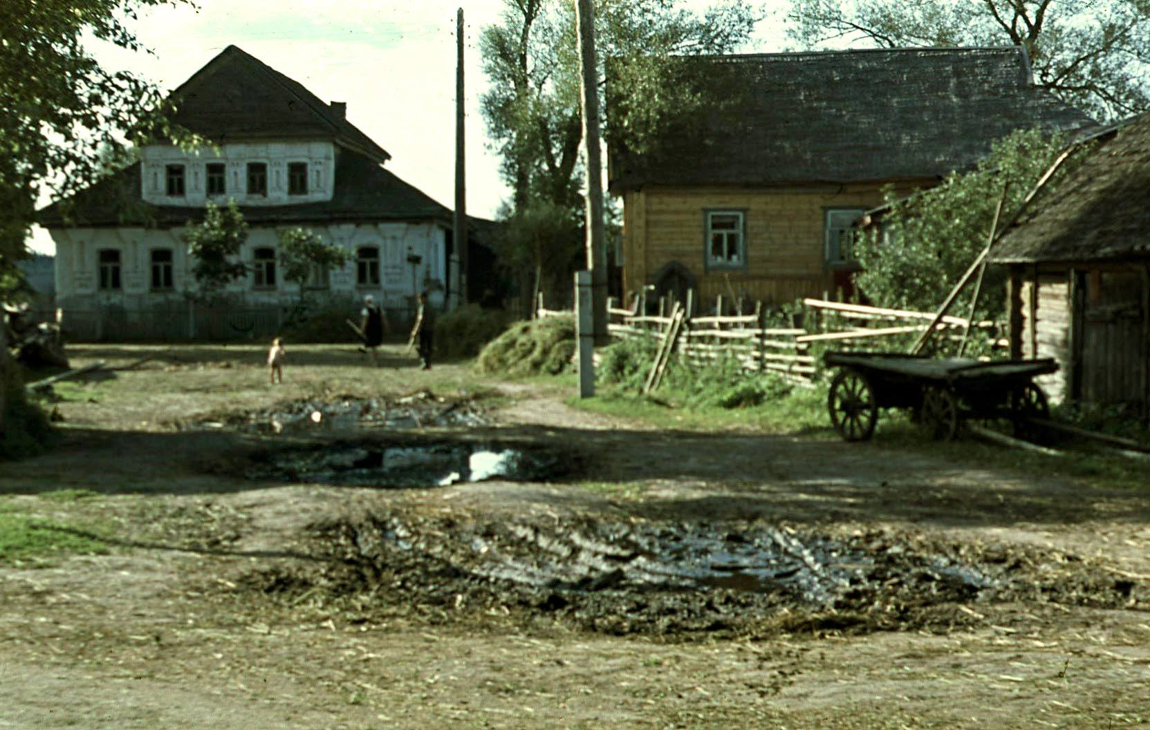 1968 Нилова. Андрей Карпухин6