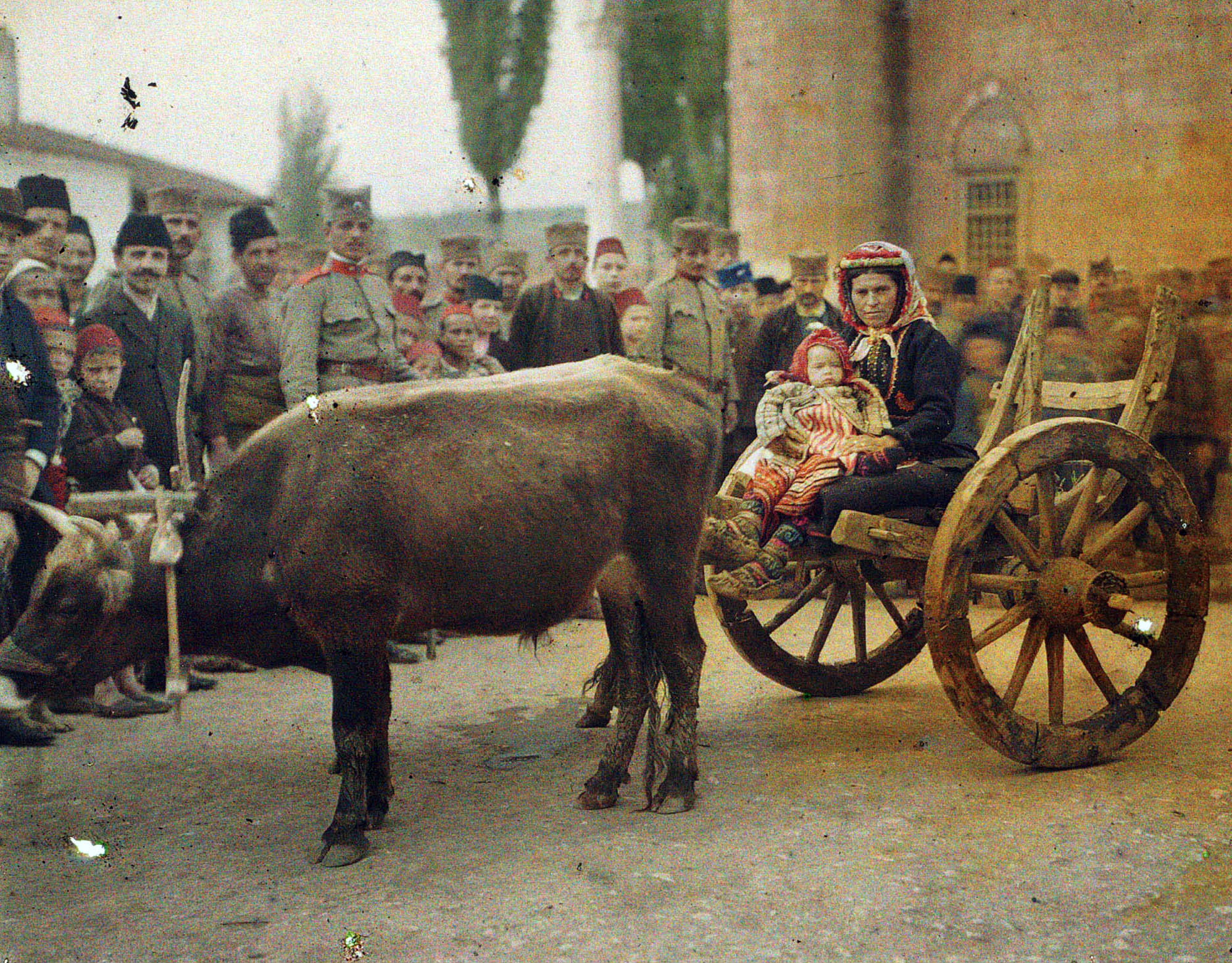 1913 pristina-gracanica_busha_cattle_serbian_soldiers_and_villagers