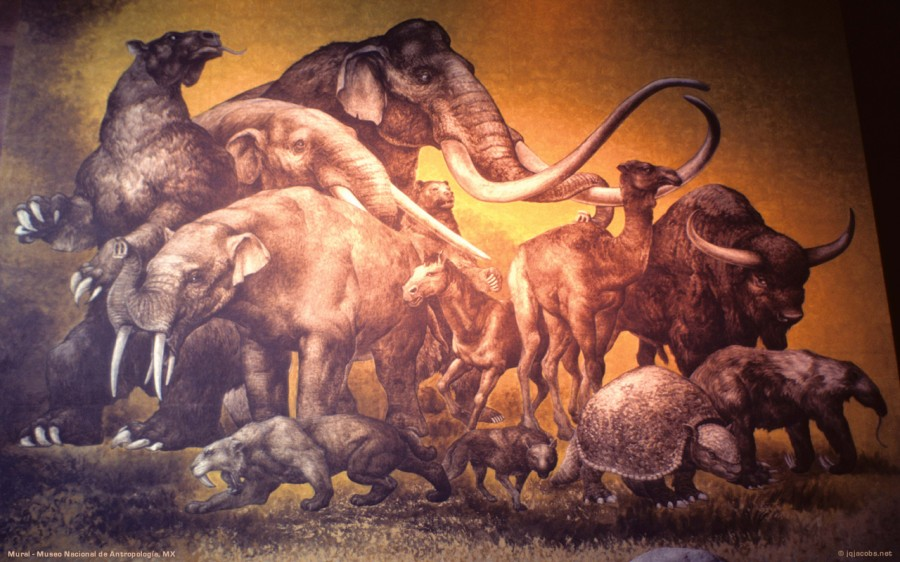 Картинки животных на которых охотились первобытные люди