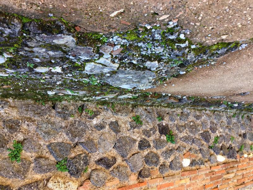 IMG_0585_Pompei_small_816x612