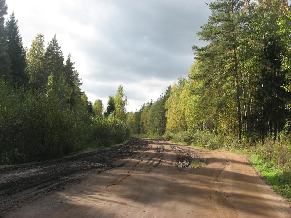 9. Автомобильная дорога в окрестностях Кубринска.
