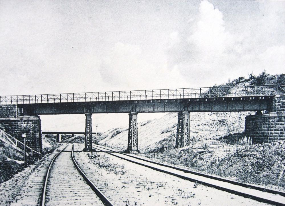 144. Общий вид моста соединительной ветви над Брянской ж.д.