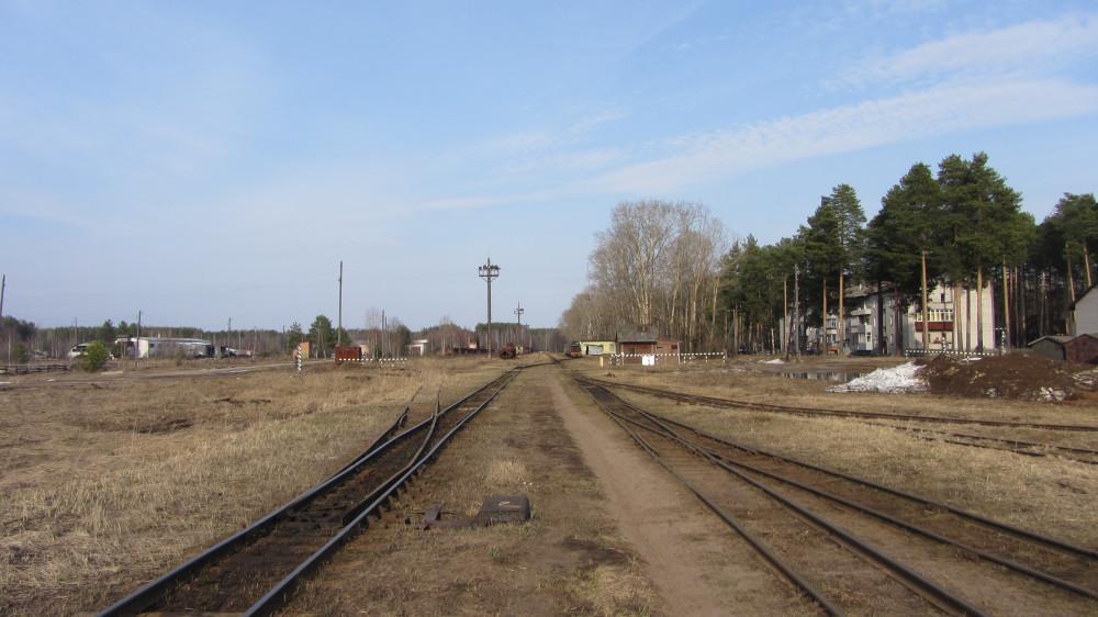99. Станция Техническая. Вид на станцию со стороны Кирово-Чепецка