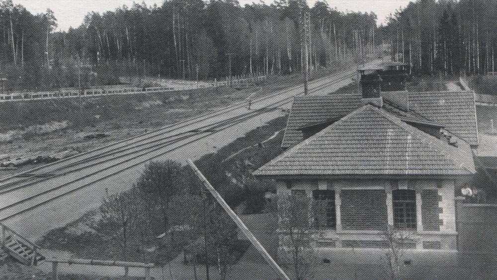 117. Вблизи станции Белокаменная, 1914 год.