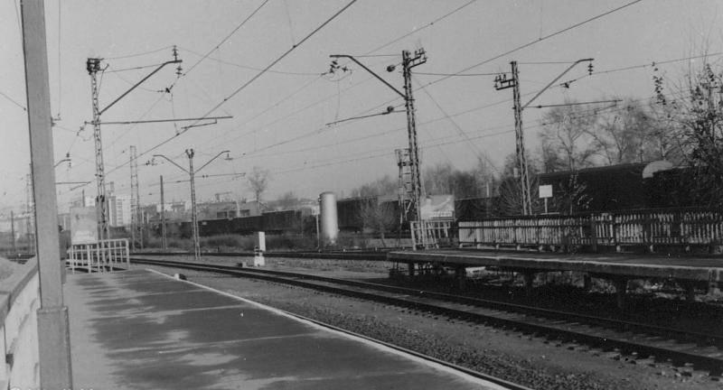 113. Станция Люблино-Дачное, 1967 год.