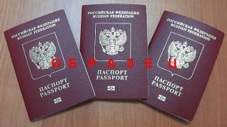 паспорт биометрический